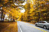 Autumnal road in new hampshire