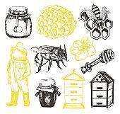 Bee Garden -  illustration of vector vintage composition