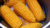 Boiled corn on the cob in the pot
