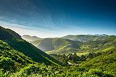 green grassy hills in california