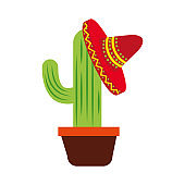 potted cactus and mexican hat decoration