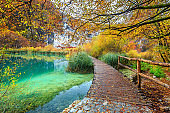 Breathtaking tourist pathway in colorful autumn forest, Plitvice lakes, Croatia
