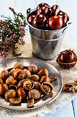Hazelnuts and chestnuts