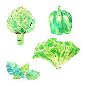 Hand dawn set with watercolor vegetables, raw food, bell pepper, lettuce, artichoke
