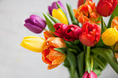 Beautiful bouquet of multicolored tulips.
