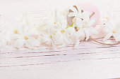 White hyacinth flowers and pink easter egg on a pink wooden background with copy space