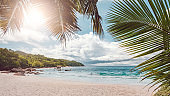 Palm and tropical beach. Praslin island, Seychelles. Vacation holidays concept