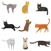 Cartoon Different Types Cute Cats Characters Icon Set. Vector