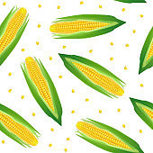 Realistic Detailed 3d Corncobs with Yellow Corns Seamless Pattern Background. Vector