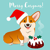 Corgi dog in Christmas Santa hat with fruitcake vector cartoon illustration isolated of aqua, caption 'Merry Corgmas'. Funny humorous pet lovers, Christmas theme flat contemporary style design element