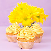 Cupcakes decorated with yellow cream and chrysanthemums on violet pastel background for greeting card with copyscape.