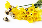 Easter, spring greeting card, invitation with quail eggs and yellow daffodils, narcissus flowers lying on white table. Feminine styled stock photo, floral composition