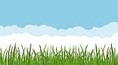 Landscape with dreen grass against the blue sky and clouds background. grass leaves and lawn at the foreground. Vector illustartion