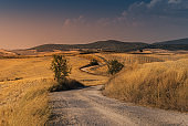Winding road through Tuscany at sunset. Italy.