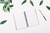 Flat lay open blank notepad, pencil and fresh green leaves