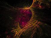 abstract digital fractal, beautiful design future