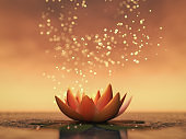 a lotus flower good for relaxation