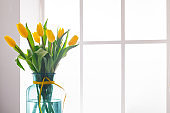 Flowers background, yellow tulips at window background, copy space