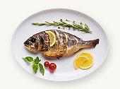 Fish dish isolated on white background