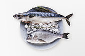 Fresh mackerel on wooden board at black background