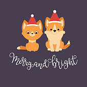Red kitten and welsh corgi puppy in Christmas hats.