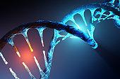 DNA strand modification