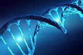 DNA structure illuminated