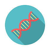DNA circle icon with long shadow. Flat design style. DNA simple silhouette.