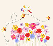 decoration branches with flowers, springtime