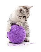 Kitten and ball.