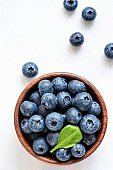Organic blueberries in bowl with green leaf on white background