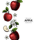 Vector frame with apples.