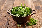 green lettuce on wood background