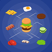 Vector isometric burger ingredients infographic concept illustration