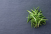 Rosemary leaves with dark gray background