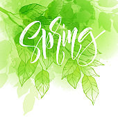 Hand lettering spring design on a green and yellow watercolor painted background with leaf. Calligraphy letters. Vector illustration