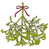 Christmas mistletoe branch