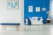 Blue and white themed interior