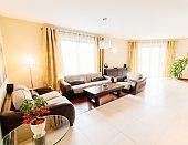 Elegant comfortable living room