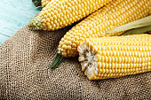 raw heads of corn, on a wooden background.