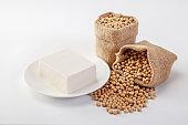 soy tofu or bean curd