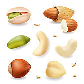 Nuts realistic vector set isolated on white background. hazelnut, pistachio, almond, cashew nuts