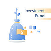 Income growth, invest fund, revenue increase, return on investment, long term wealth management, more money, high interest