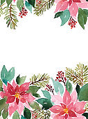 Watercolor Christmas template with evergreen plants. Poinsettia, spruce and red berries floral arrangement