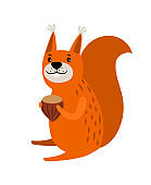 Squirrel red cartoon icon