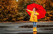 happy child girl with an umbrella and rubber boots in puddle  on autumn walk