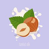 Hazelnut milk. Hazelnuts on a milk splash. Vector illustration.