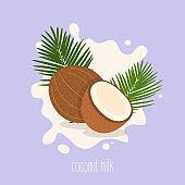 Coconut milk. Coconut on a milk splash. Vector illustration.