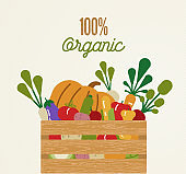 Organic food concept with healthy vegetables