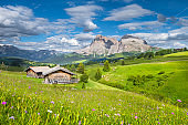 Alpine scenery in the Dolomites with green meadows and mountain chalets at Alpe di Siusi, South Tyrol, Italy